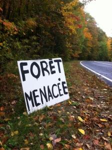 Forêt menacée